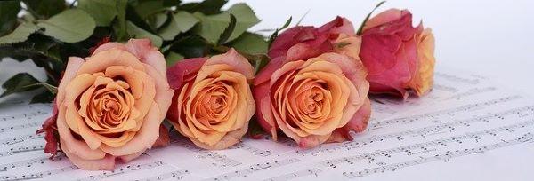 薔薇と譜面
